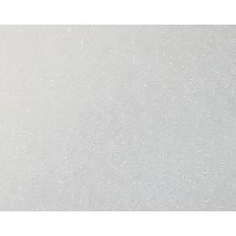Sucre naturel de bouleau - Xylitol