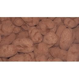 Truffe de noix de pécan